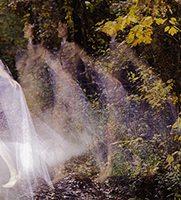 Ghost CWOriginal 3faded-webS