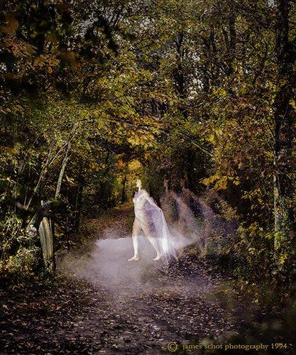 Ghost Chilmark Woods Original Drk-webS