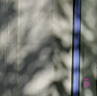 turbulent shadows webS